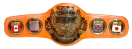 ECW FTW Heavyweight Championship.png