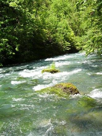 Greer Spring - Greer Spring branch roaring toward the Eleven Point River