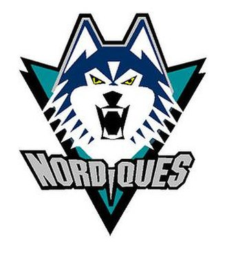 Quebec Nordiques - The Nordiques had planned on using this logo if the team had stayed in Quebec beyond the 1994-95 season.
