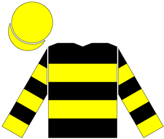 Trempolino American-bred Thoroughbred racehorse