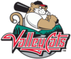 TC ValleyCats.PNG