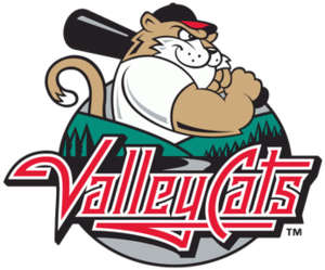 Tri-City ValleyCats - Image: TC Valley Cats