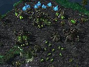 A Zerg colony under attack by other Zerg