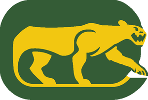 Chicago Cougars - Image: CHI Cougars WHA