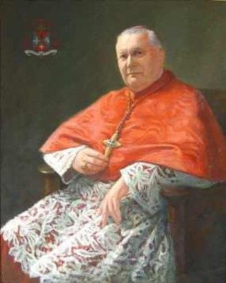 Maurice Feltin - Portrait.