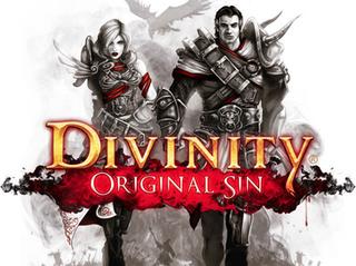 <i>Divinity: Original Sin</i> 2014 video game