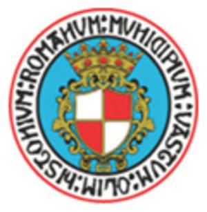 Vastese Calcio 1902 - Club crest used until 2009
