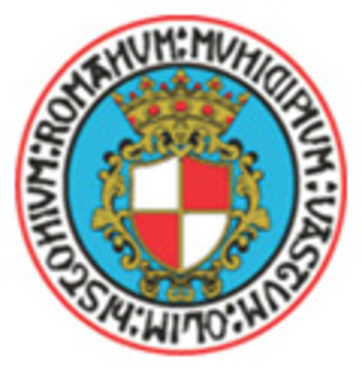 Vastese Calcio 1902 - Club crest used until 2009