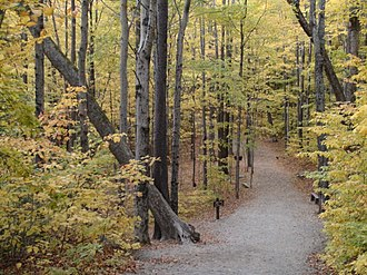 Lincoln, New Hampshire - Hiking trail in Franconia Notch State Park