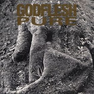 Pure (Godflesh album) - Image: Godflesh Pure