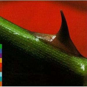Night Song (Nusrat Fateh Ali Khan album) - Image: Night Song (Nusrat Fateh Ali Khan album)