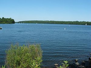 Nockamixon State Park - A view of the lake near the boat rentals