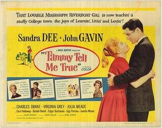1961 film by Harry Keller
