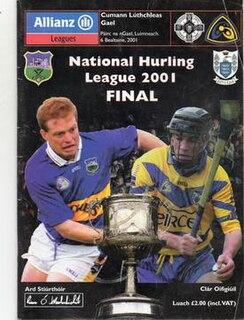 2001 National Hurling League