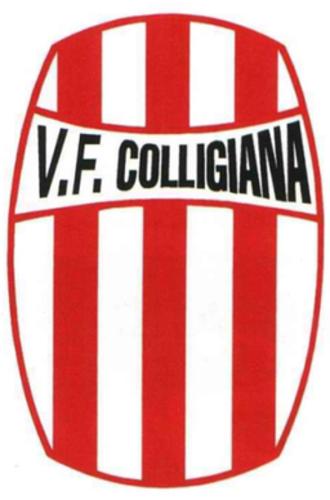 A.S.D. Olimpia Colligiana - Old Valdelsa Football Colligiana logo