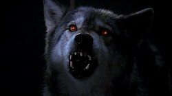 Alpha (The X-Files) - WikiVisually