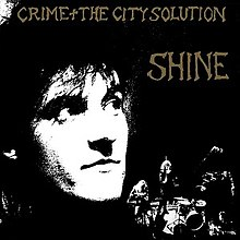 Crime and the City Solution - Shine.jpg