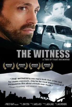 The Witness (2000 film) - Image: Film poster for the movie The Witness made in 2000