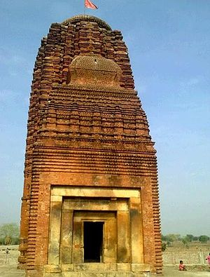 Balangir district - 8th Century AD Indralath Temple at Ranipur-Jharial.