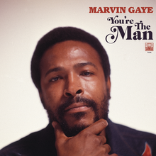 Marvin Gaye - You're the Man.png