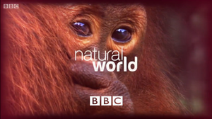 Natural World (TV series) - 2013 series title card