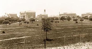 From humble beginnings: The first five buildings erected on the University's Hattiesburg campus.