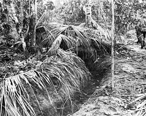 Edwin F. Harding - Japanese bunker at Buna made from coconut logs