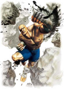 Sagat (Street Fighter).png