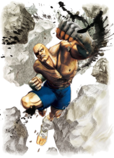 Sagat (<i>Street Fighter</i>) character from the Street Fighter fighting game series