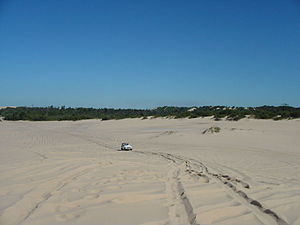 Stockton Beach - A 4WD vehicle heading toward the waterfront after entering Stockton Beach via Lavis Lane.