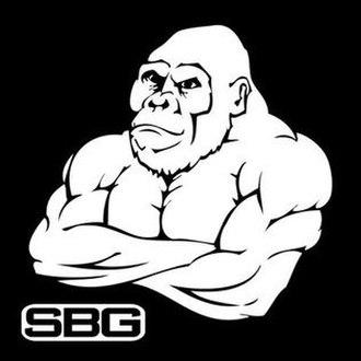 Straight Blast Gym - Ireland - Image: Straight Blast Gym