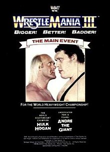 Image result for WWF Wrestlemania 3