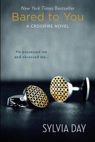Picture of a book: Reflected In You