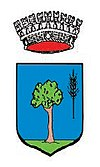 Coat of arms of Bicinicco