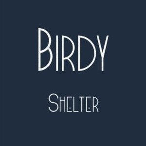 Shelter (The xx song) - Image: Birdy Shelter (single cover)