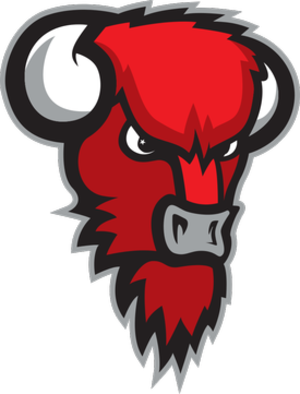 Bisons Loimaa - Image: Bisons Loimaa logo