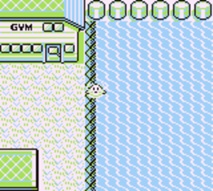 MissingNo. - The eastern shore of Cinnabar Island, a key component for activating the glitch