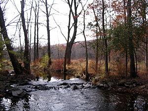Goosepond Mountain State Park - Image: Goose Pond stream
