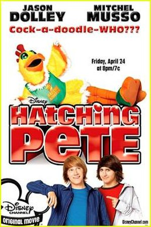 Hatching Pete - Promotional poster