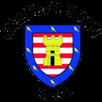 Morpeth Town F.C. logo.png