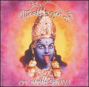 Om Namah Shivay (album) - Image: Nina Hagen Om Namah Shivay