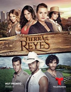 Official poster of Tierra de reyes.jpg