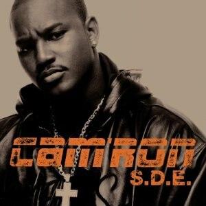 S.D.E. (album) - Image: SDE cover