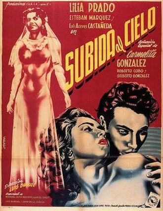 Mexican Bus Ride - Film poster