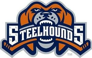Youngstown SteelHounds - Image: Youngstown Steelhounds