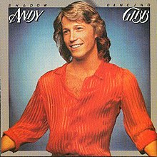Andy Gibb shadow.jpg