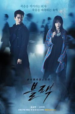 Black (TV series)-poster.jpg
