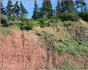 Central Atlantic magmatic province - Basal contact of the North Mountain section of Fundy basin, Nova Scotia, Canada