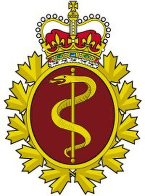 Canadian Forces Health Services Group - Royal Canadian Medical Service Badge