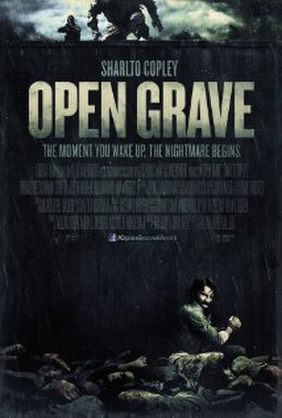 Picture of a movie: Open Grave